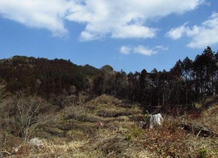 カラ迫岳星野 115