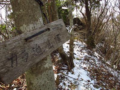 カラ迫岳星野 152
