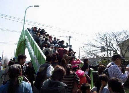 柳川水上パレード 138