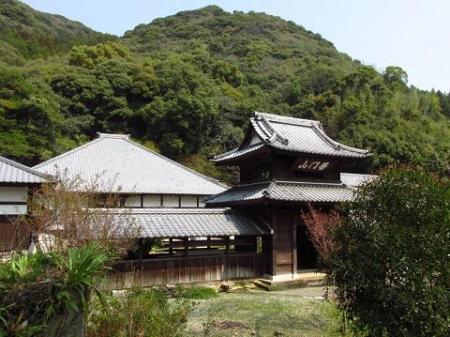 円応寺の桜 051