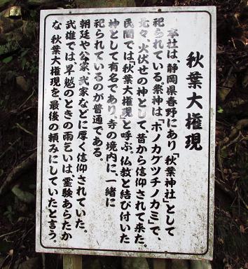 円応寺の桜 077