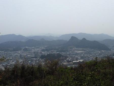 円応寺の桜 100