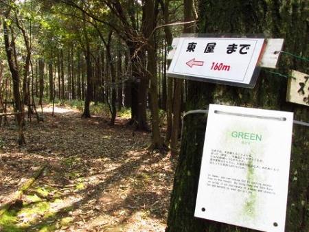円応寺の桜 094