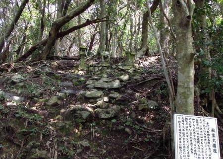 円応寺の桜 078
