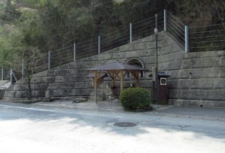 円応寺の桜 154