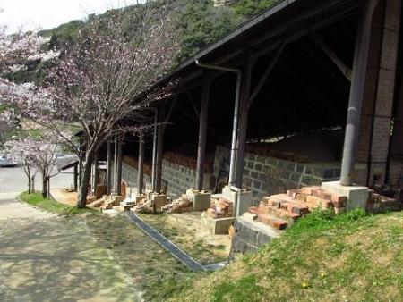 円応寺の桜 171