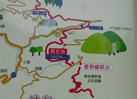 花猫の目草カラ迫岳 076