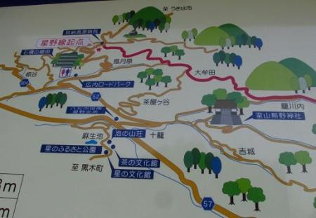 花猫の目草カラ迫岳 119