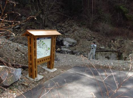花猫の目草カラ迫岳 125
