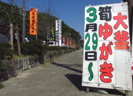 立花町の竹の子 082