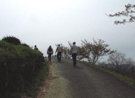 花散る清水山 028
