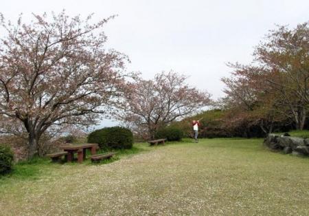 花散る清水山 035