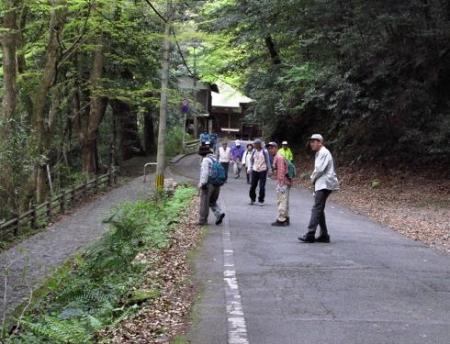 花散る清水山 082