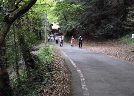 花散る清水山 081