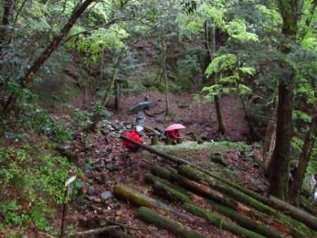 カラ迫岳の山開き 055