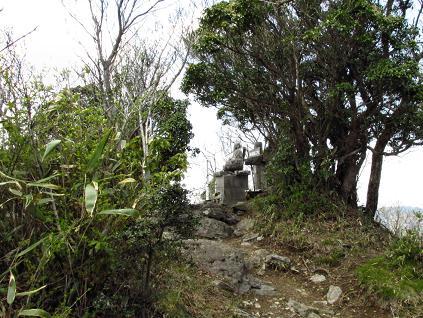 釈迦岳とワチガイソウ 113