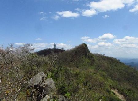 釈迦岳とワチガイソウ 152
