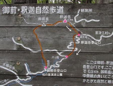 釈迦岳とワチガイソウ 243