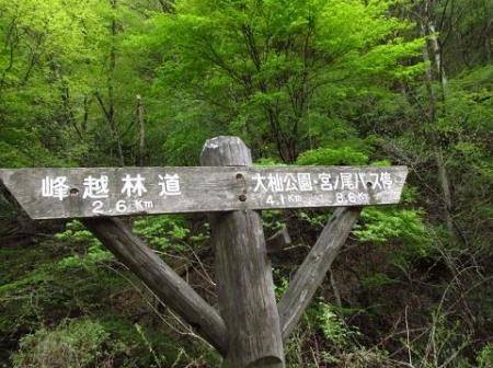 釈迦岳山開き 204