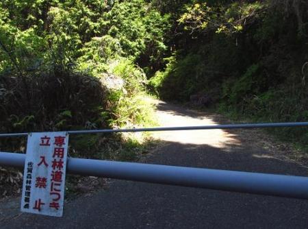 ツツジ井原山の 018