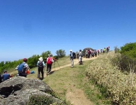 ツツジ井原山の 065