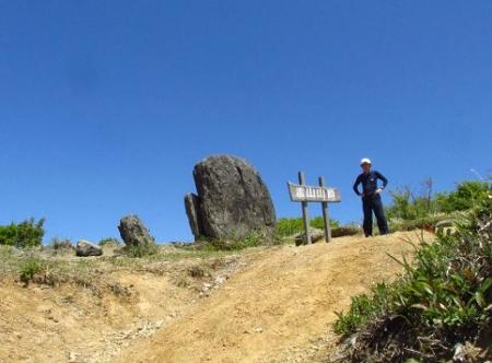 ツツジ井原山の 062