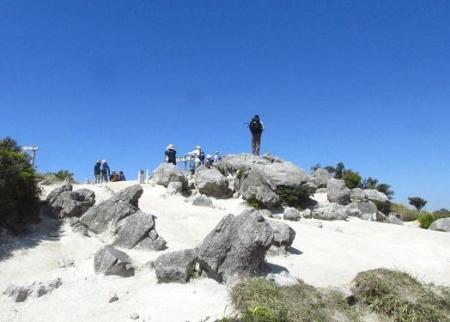ツツジ井原山の 217