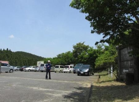 天山ミヤマキリシマ 006