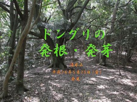 小岱山と清水山 267