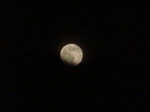 月の出 016