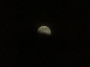 月の出 014