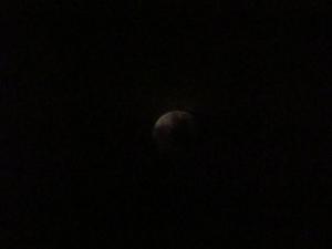月の出 015