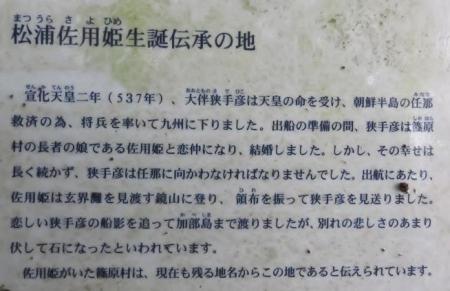 佐用姫 039