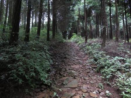 馬鈴八幡岳 129