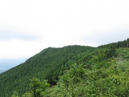 馬鈴八幡岳 169