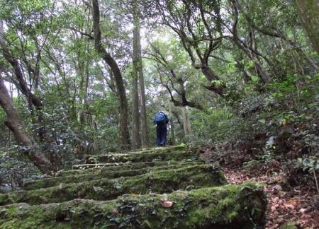 天童岩 052