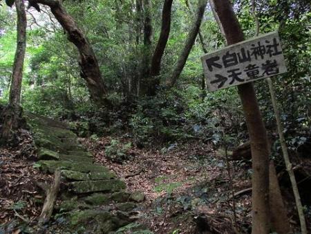 天童岩 071