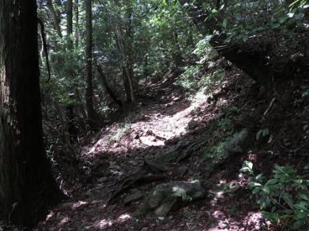 多良岳 057