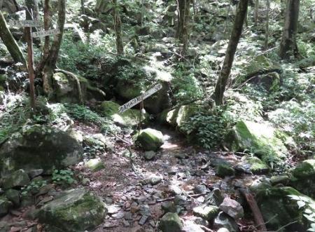 多良岳 142