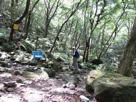 多良岳 140