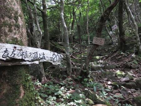 多良岳 186