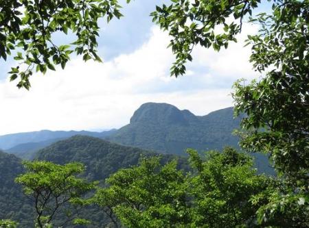 多良岳 241