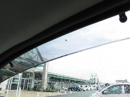車の蜘蛛 001