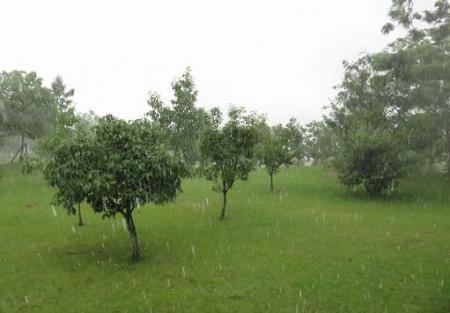土砂降り 029