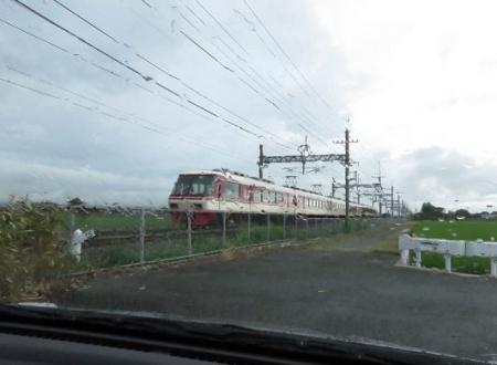 電車と公園の鳥 010