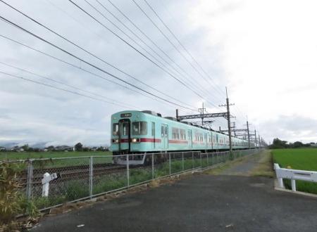 電車と公園の鳥 011