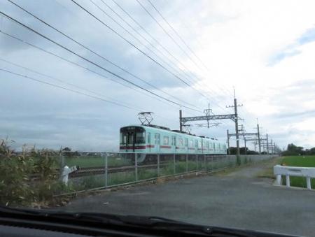 電車と公園の鳥 009