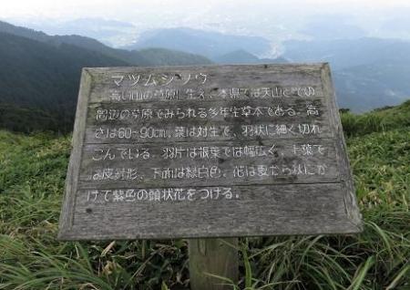 天山に登る 135