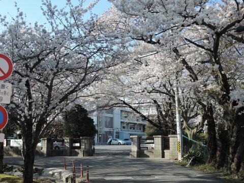 桜が丘高校 1