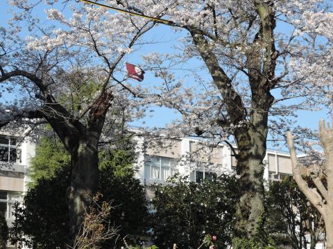 桜が丘高校 2